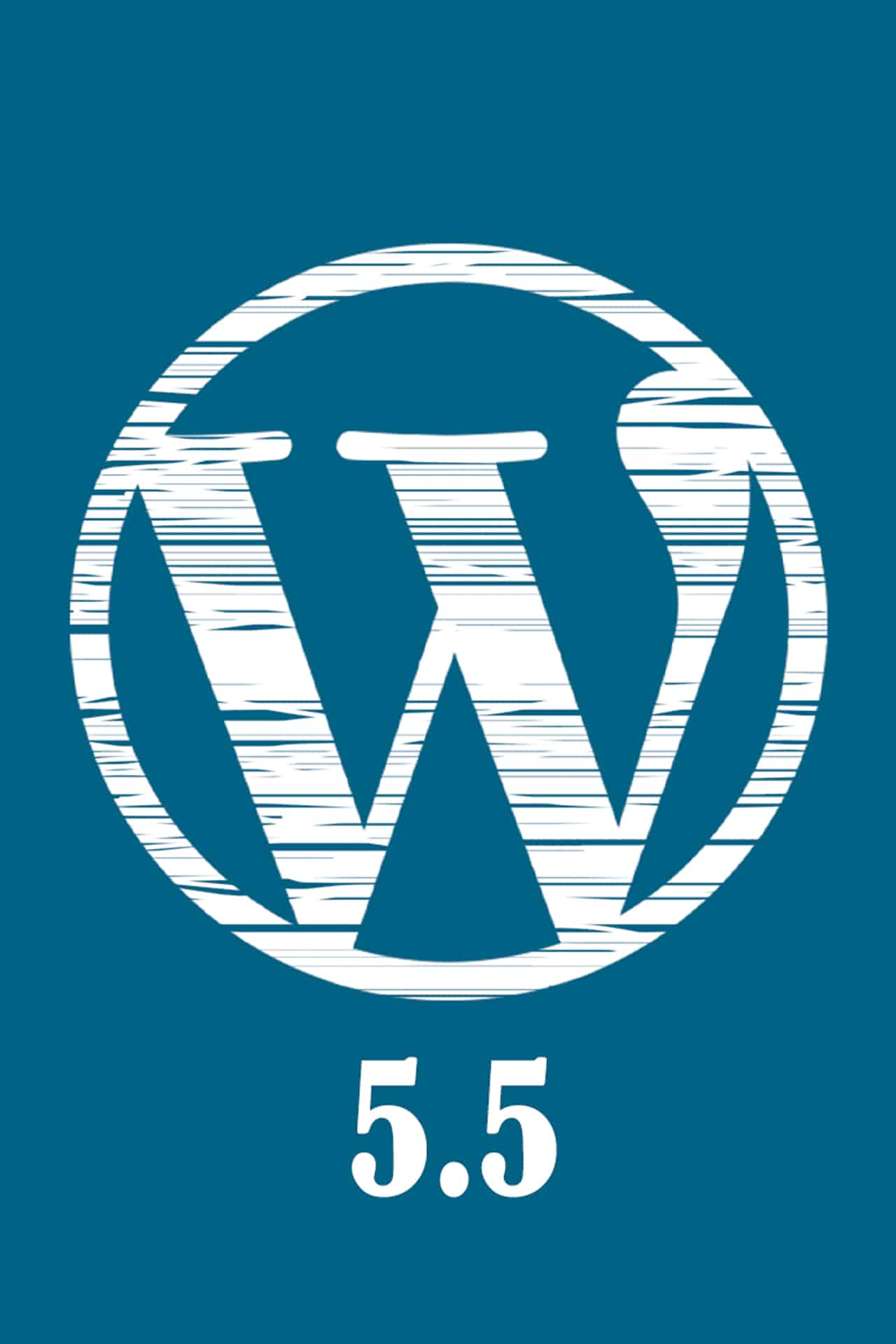 wordpress 5 5 aggiornamento