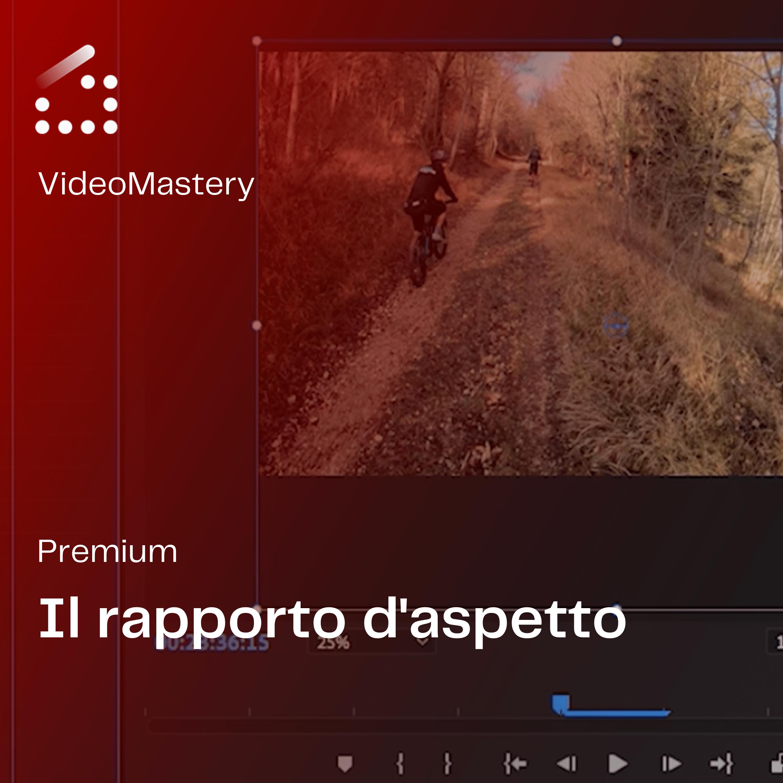 VideoMastery (2)